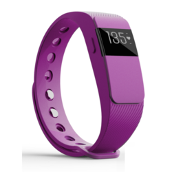 IQ FIT HR 2.0 Interchangeable Extra Wrist Band Only - Purple