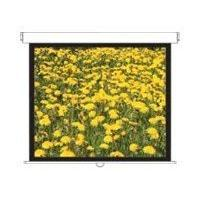 Optoma DS-3120PMG 120 Inch Projection Screen