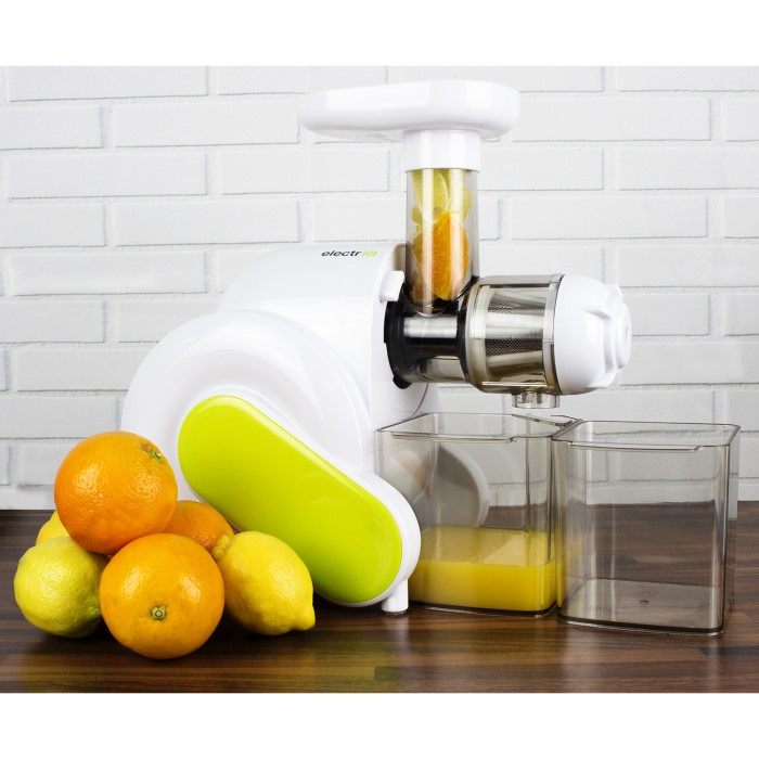 ElectriQ HSL600 Slow Masticating Cold Press Juicer BPA free Appliances Direct