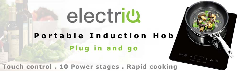 electriq_induction_plate