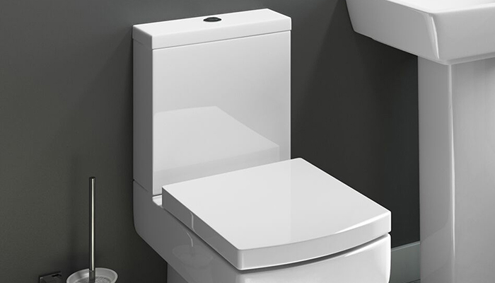 Toilet Buying Guide | Appliances Direct