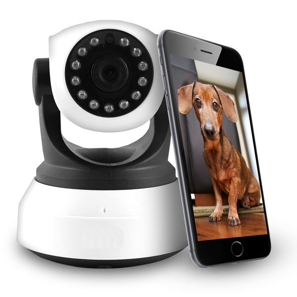 electriQ IQ-51FX IP Pet and CCTV Camera
