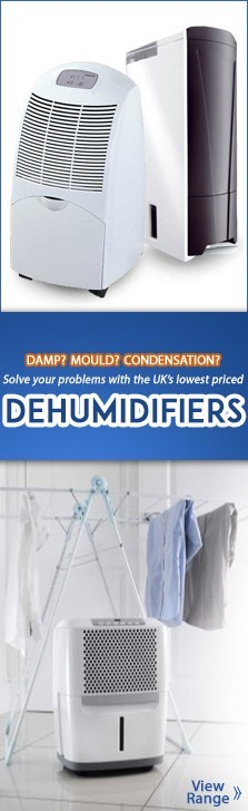 Dehumidifiers for Winter