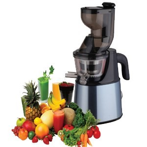 iQ Whole Fruit Masticating Slow Gear Wheatgrass Juicer